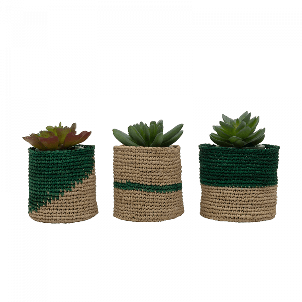 Green Mini Planter Baskets, Set of 3