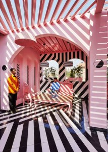 Flân' Club: The Pink Zebra, India