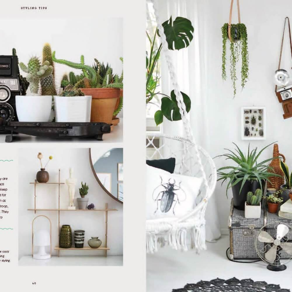Urban Jungle Book: Living and Styling with Plants